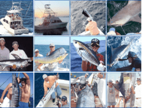 twelve small pictures of guys catching fish , from different charters with Seaboots